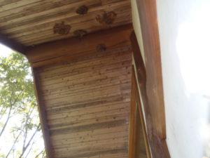 4個のスズメバチの巣を除去しました