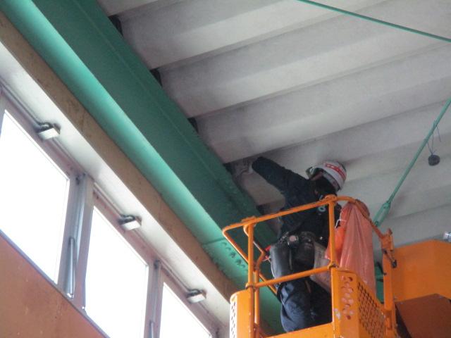 倉庫内上部への防鳥スパイク設置
